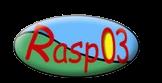 rasp03
